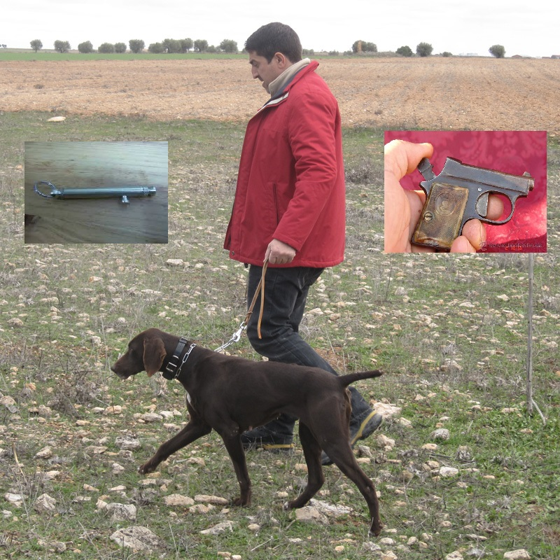 se-podran-seguir-usando-armas-detonadoras-en-el-adiestramiento-profesional-de-perros-de-caza-perros (1)