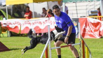 III CE de RFEC  – Equipos Jumping 2016 10 15