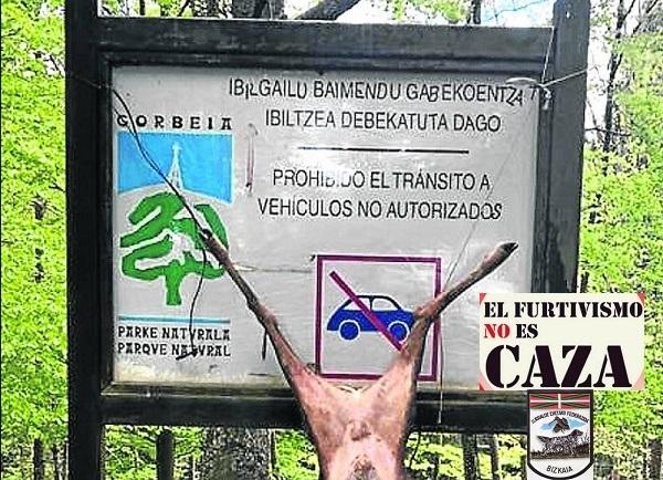 caceria18-k4LF-U140403312034l0D-1248×1800@El Correo (002)